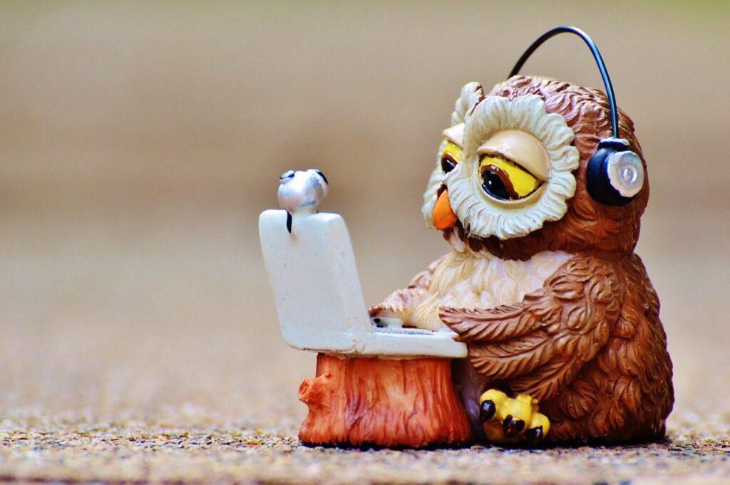 パソコンをするフクロウ