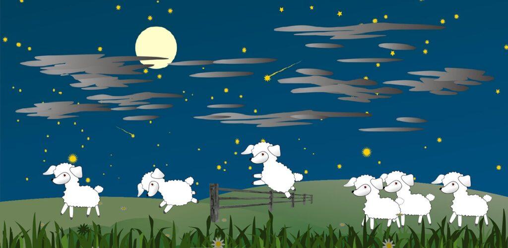 中途覚醒の改善のため羊を数える