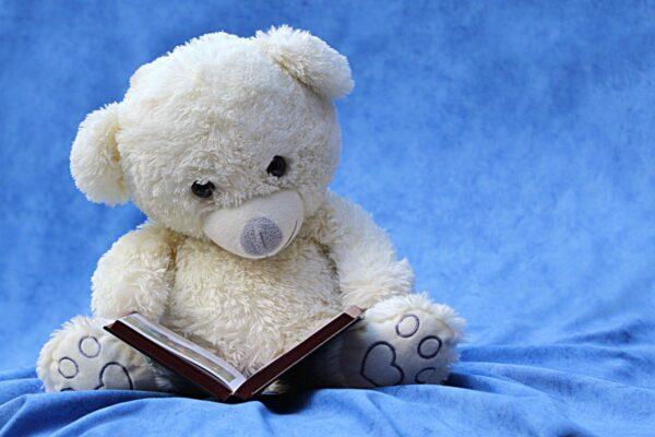 本を読むクマ