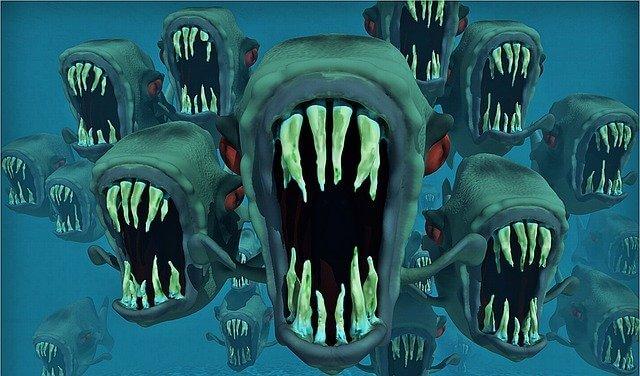 サメの大群