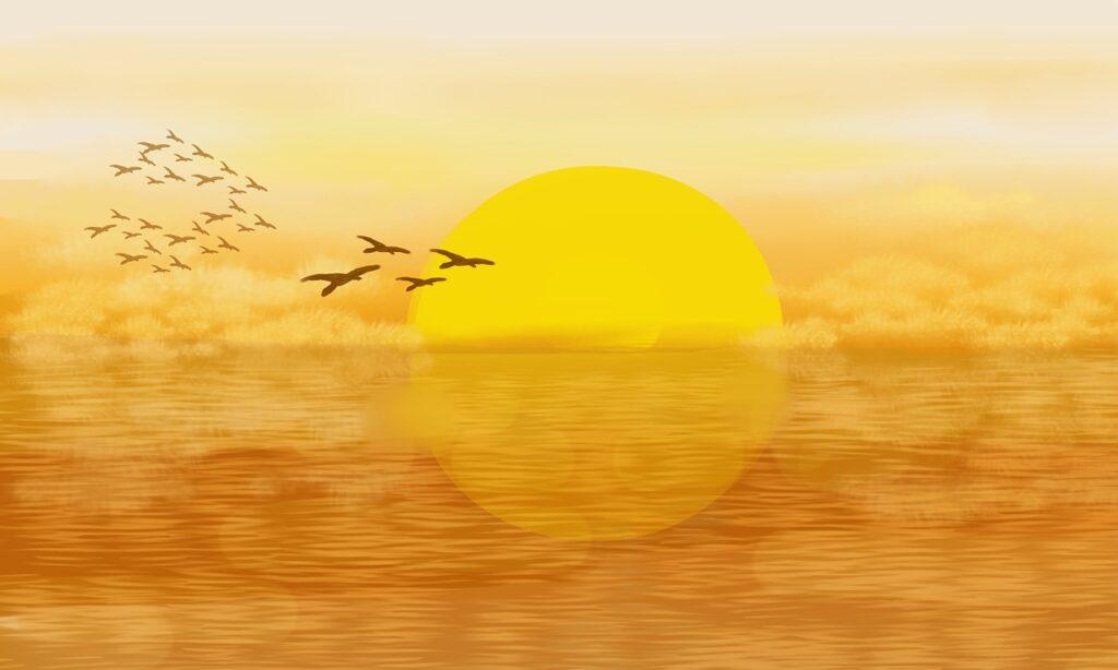 夕焼けに空に鳥の群れ
