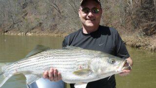 釣りビジョンVODは釣り好きの中高年におすすめ!メリット・デメリット