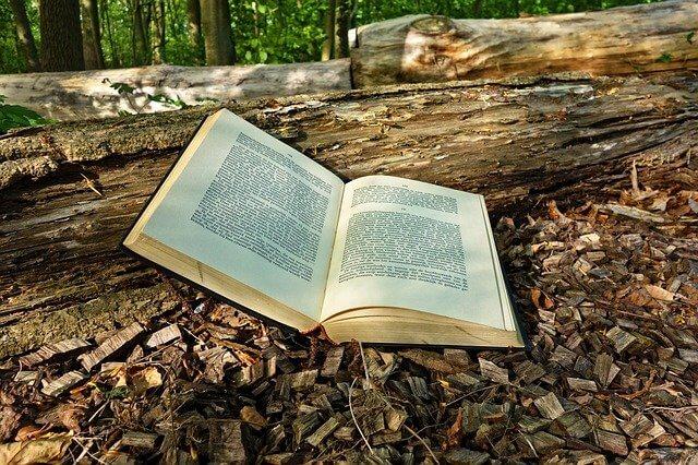 森の中に置いてあるある本