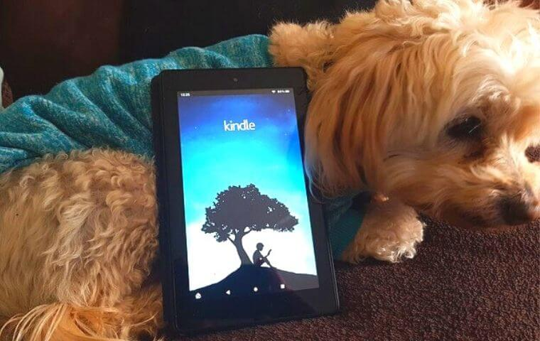 スマートフォンと犬